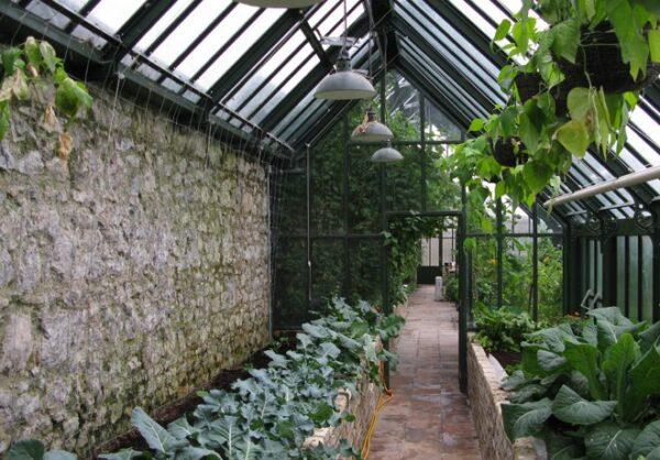 HARTLEY väggväxthus