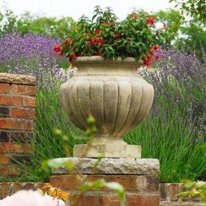 Shugborough-Vase