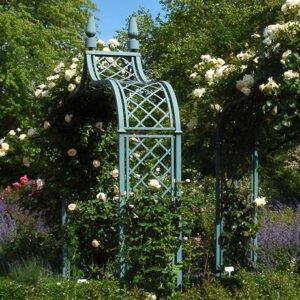 Rosenågar, växttorn och spaljéer