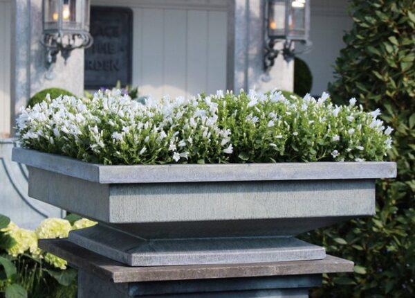Klassisk-och-stilren-planteringsbadd-i-zink-for-din-tradgard-eller-uteplats-fran-Vansta-Tradgard