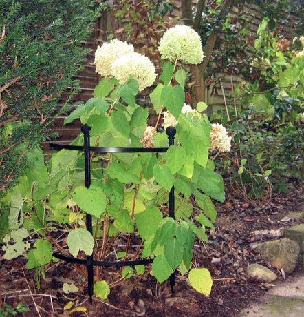 Snyggt-och-stadigt-blomstod-av-oslagbar-kvalitet