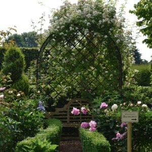 En-fantastisk-rosenbersa-i-Victoriansk-stil-fran-Vansta-Tradgard